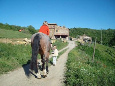 """A Chianti farmstay - """"agriturismo"""""""